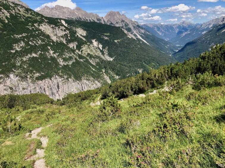 Durch die Latschenfelder oberhalb des Jochbachtals