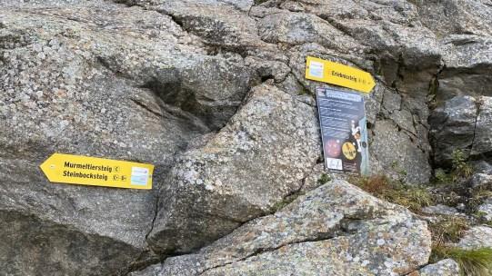Wegkreuzung zwischen Erlebnissteig und Murmeltier- bzw. Steinbocksteig