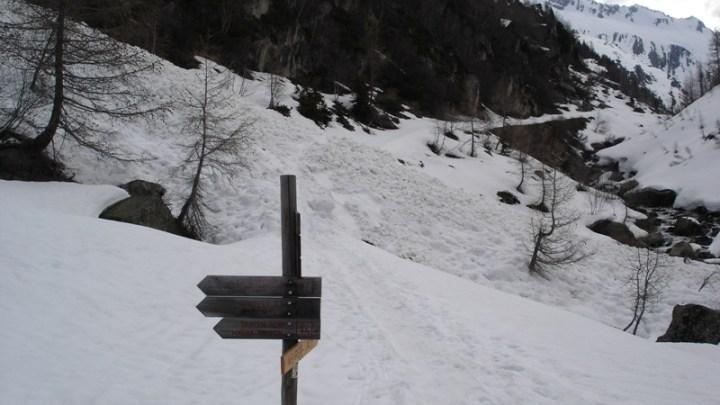 Dreiherrenspitze (3499m)