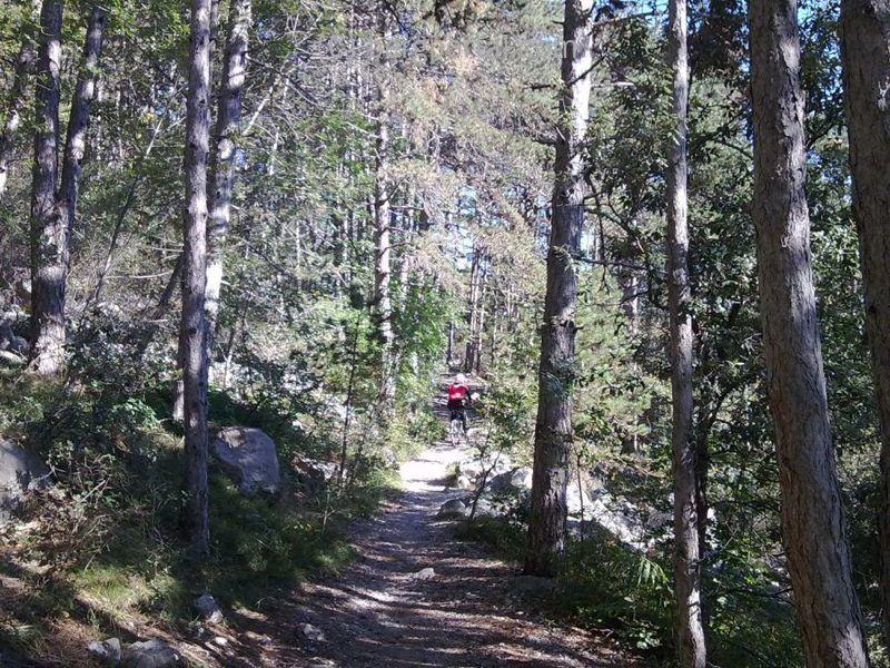 Val Lomasona (Sella di Calina 962m)