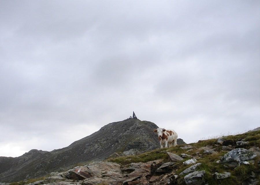 Gipfelrunde Durnholz