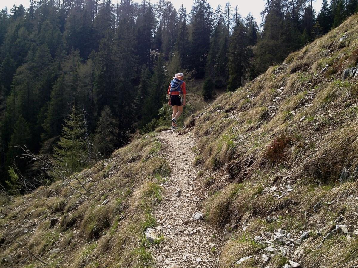 Prazöller Steig - Lavinaspitz - Mendelpass