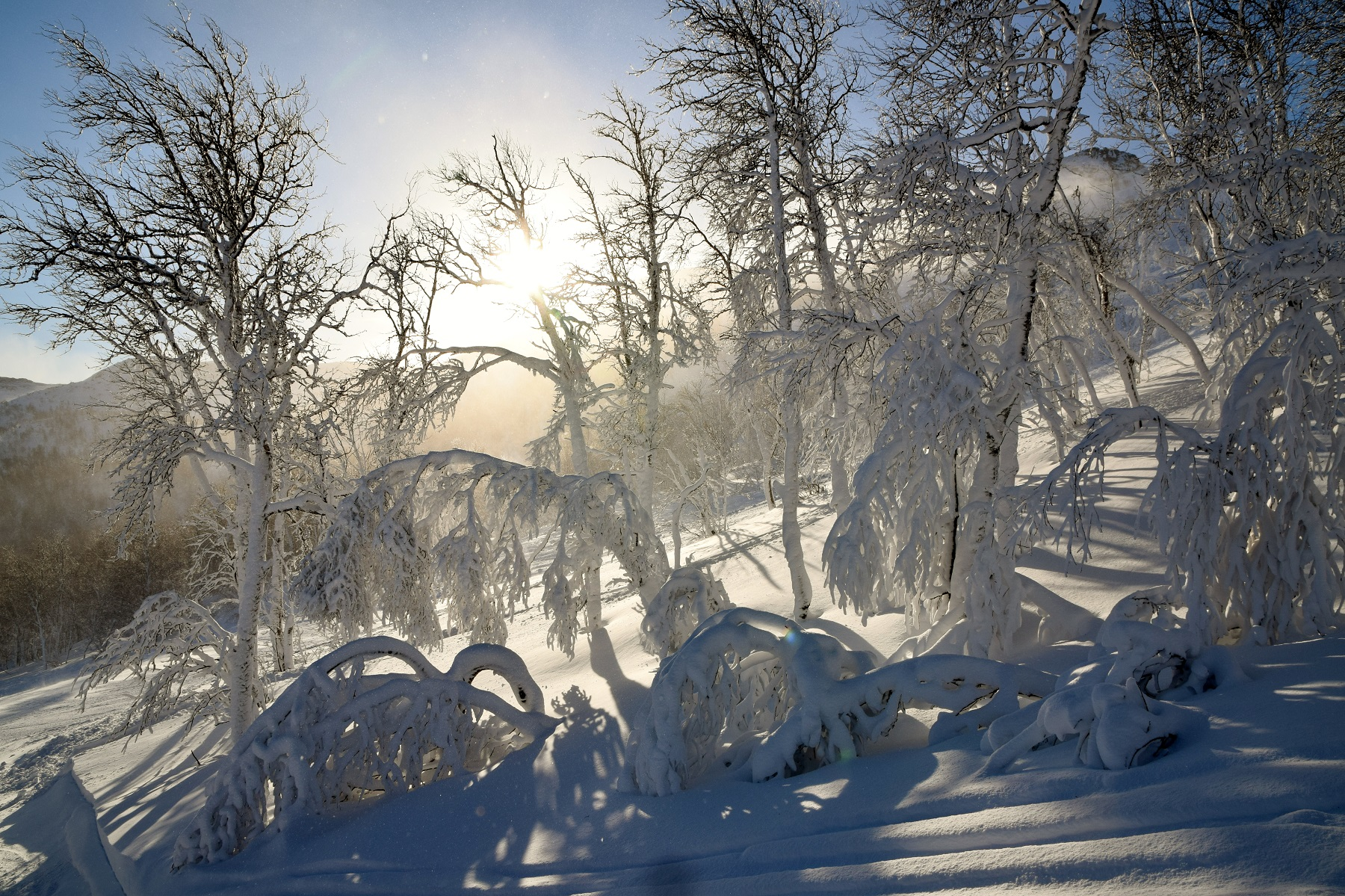 Tur vinter (2)