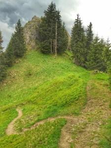 Bänkle am Grat zwischen Schwandalpe und Grüntenhaus