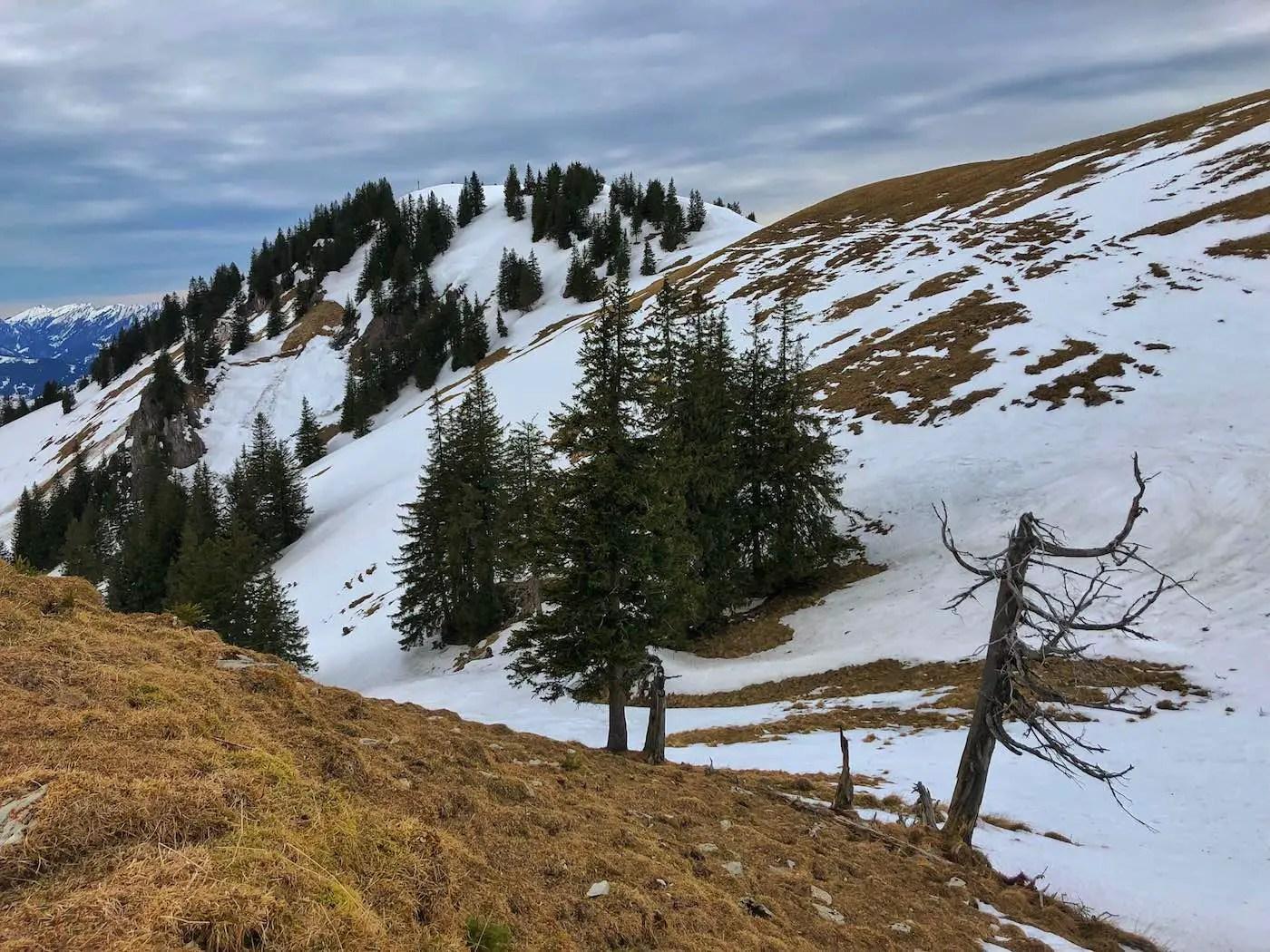 Schneeschuh-Tour auf den Spieser, 1649m