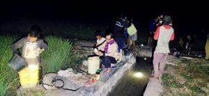 Kadis Ketahanan Pangan Lutra Pimpin Penyemprotan Hama Ulat Grayak di Sabbang