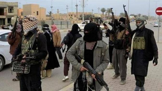 Kombatan ISIS