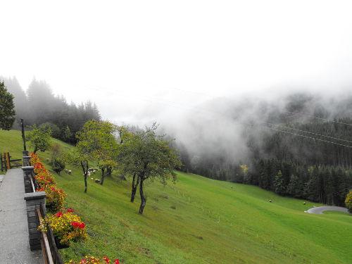 Dimma i Kärnten