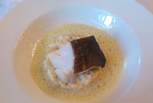 Steamed cod, risotto with artichokes, emulsion of creamed tarragon