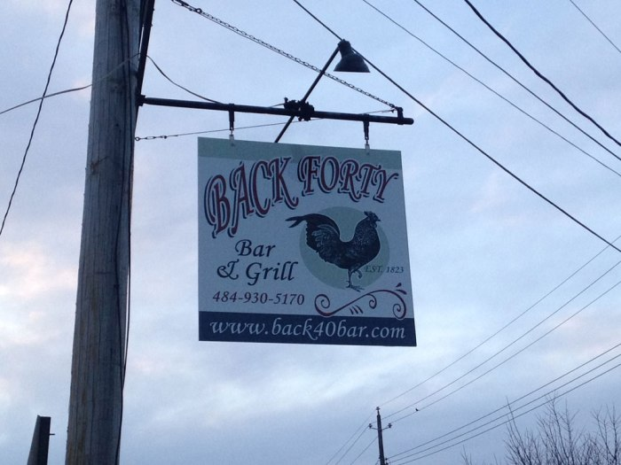 back-forty-bar-and-grill-sign