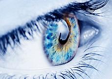eye doctors reading pa