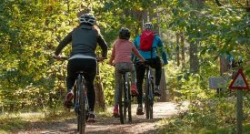 family bike ride, family cycle, famiily sporting activites