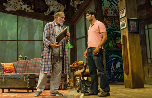 """Judd Hirsch and Rupak Ginn in """"The Stone Witch,"""" BTG, 2016. Photo by Emma Rothenberg-Ware."""