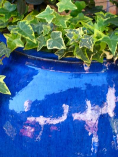 Blue Vase, Galleria