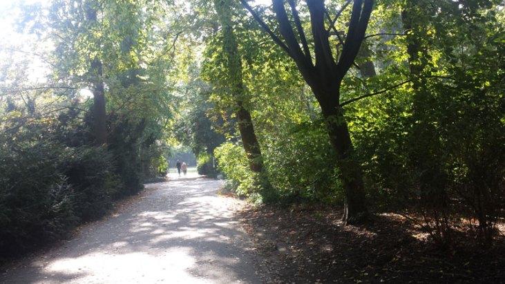 Tiergarten1_redu