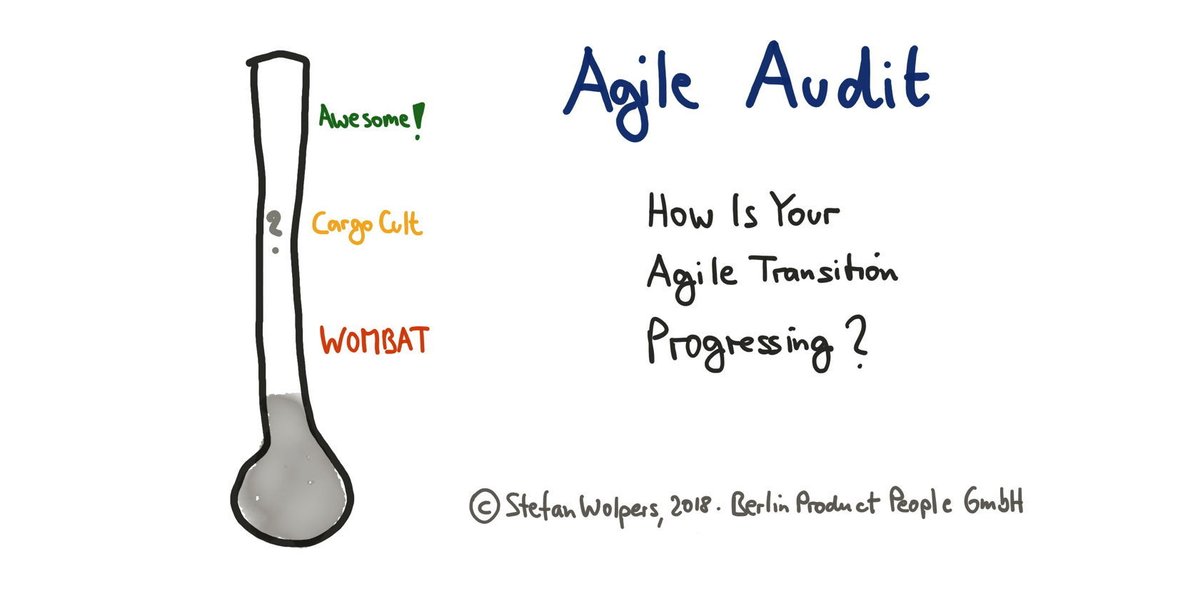 Agile Audit — Is Your Agile Tranformation Progressing?