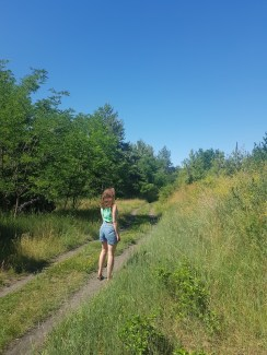Walking trails around the Old Airport.