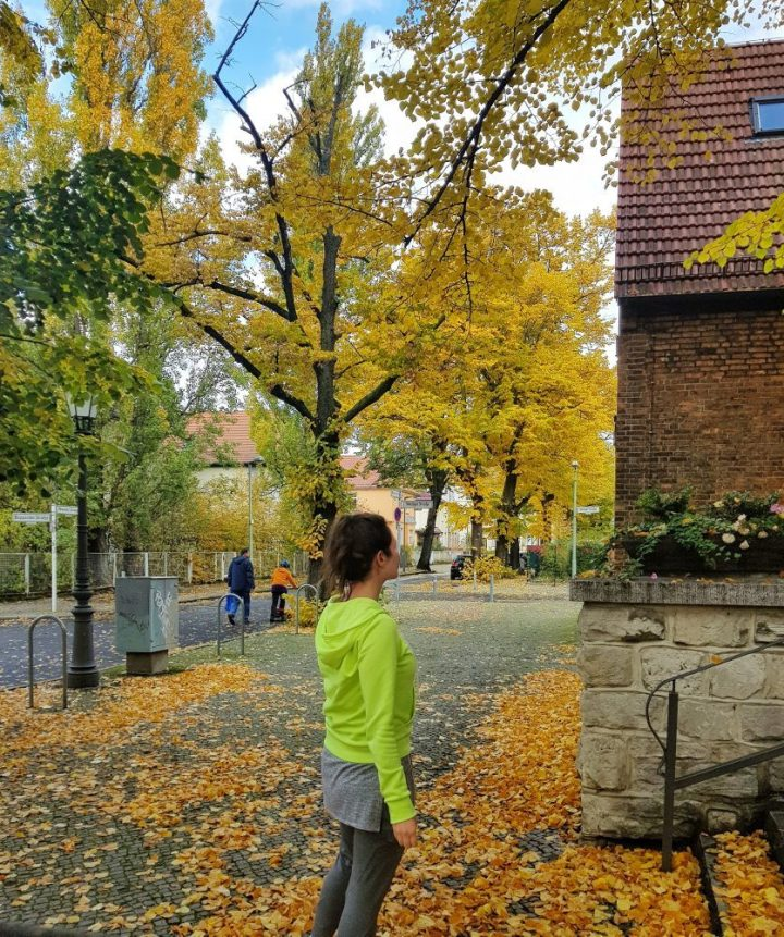 Where to See Fall Foliage in Berlin (and Potsdam)