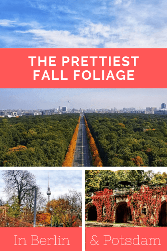 see fall foliage in Berlin and Potsdam