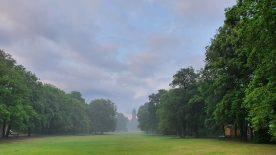 Berlin Jungfernheidepark Frühsommer Nebel