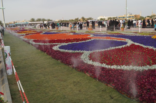 Ladiea and gentlemen, I present to you the largest flower bed you will probably find in this whole region. 36000 something flowers I believe.