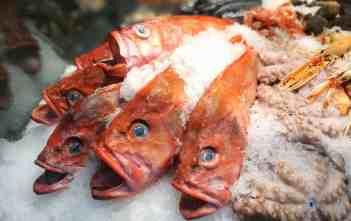 Berlin Loves You Huawei P9 Plus Copenhagen Fish