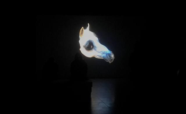Horse-the-demons-brain-agnieszka-polska