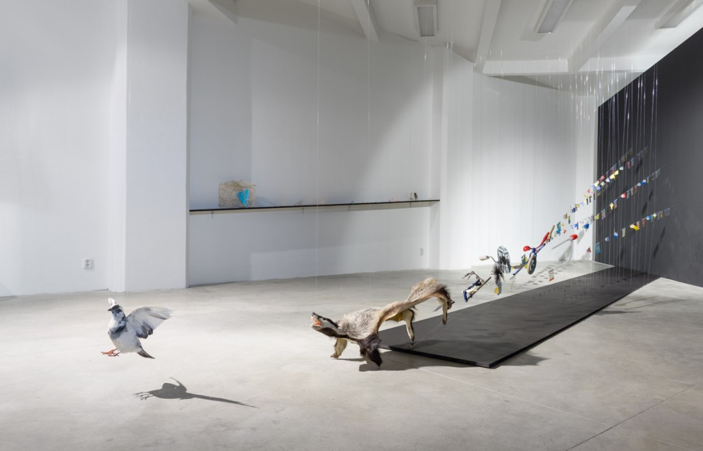 Artist Marketa Magidova explores the field of human relations mostly in the perspective of balancing the power. Her main focus lies in topics of inequality, abnormality, dominancy and inferiority; processes resulting from the omnipresent need of work efficiency, objectivity and stability.