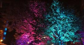 lichtfestival151
