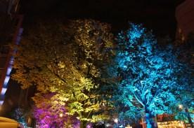 lichtfestival161