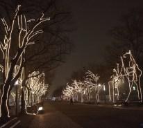 udl-lights2