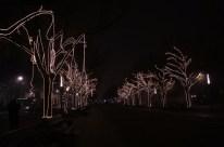 udl-lights8