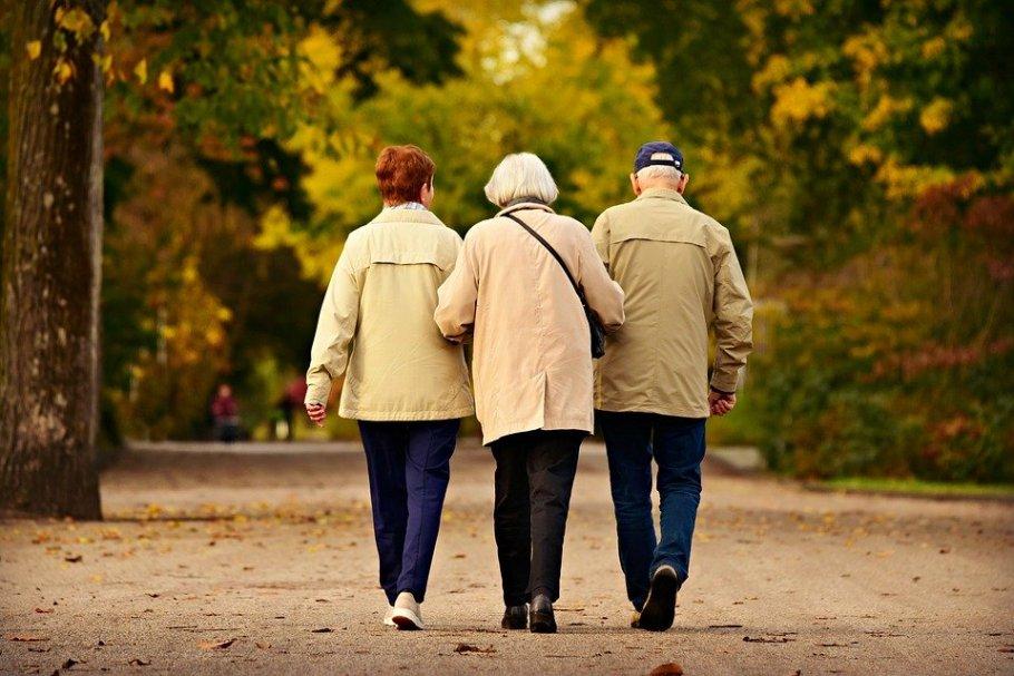Irisina combate perda de memória