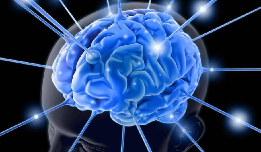 Cuidar do cérebro - bernadetealves.com