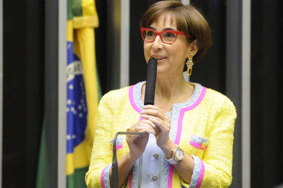 Viviane Senna, presidente do Instituto Ayrton Senna, durante sessão solene na Câmara dos Deputados - Bernadete Alves