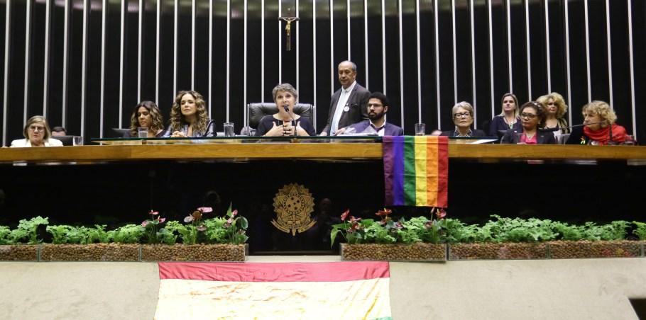 Câmara dos Deputados relembra o Levante de Stonewall - Bernadete Alves
