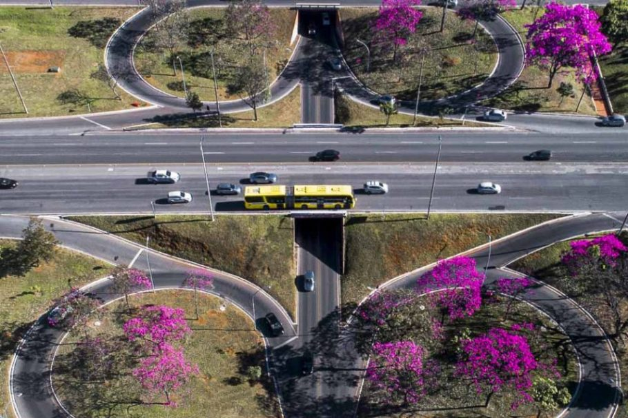 Brasília - arco-iris de flores - Bernadete Alves