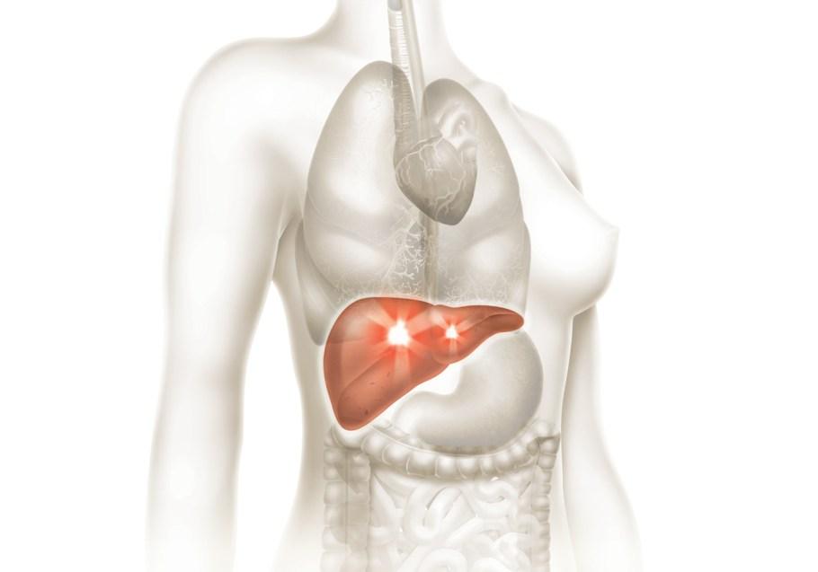 Dia Mundial de luta contra Hepatites Virais - Bernadete Alves