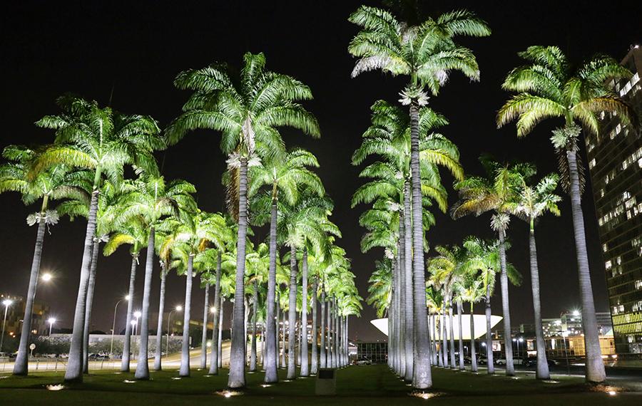 Balé na Praça dos Três Poderes encanta e emociona o público - Bernadete Alves