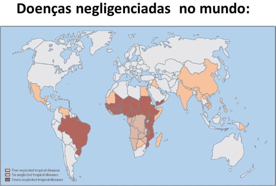 Cientistas se unem em rede global para combater doenças negligenciadas - Bernadete Alves