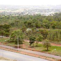 GDF retira depósito de veículos para revitalizar o Burle Marx