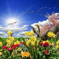 Primavera: tempo de renascer e colorir a alma