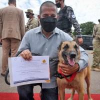Cães da segurança pública do DF recebem Honra ao Mérito K9