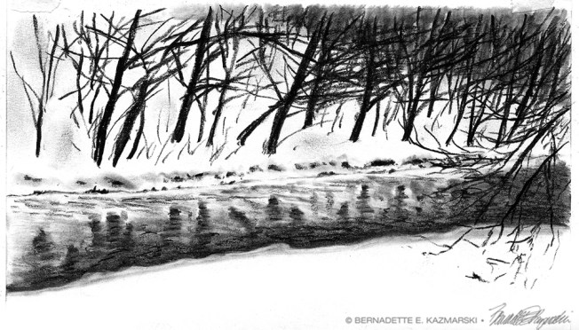 Chartiers Creek in Snow