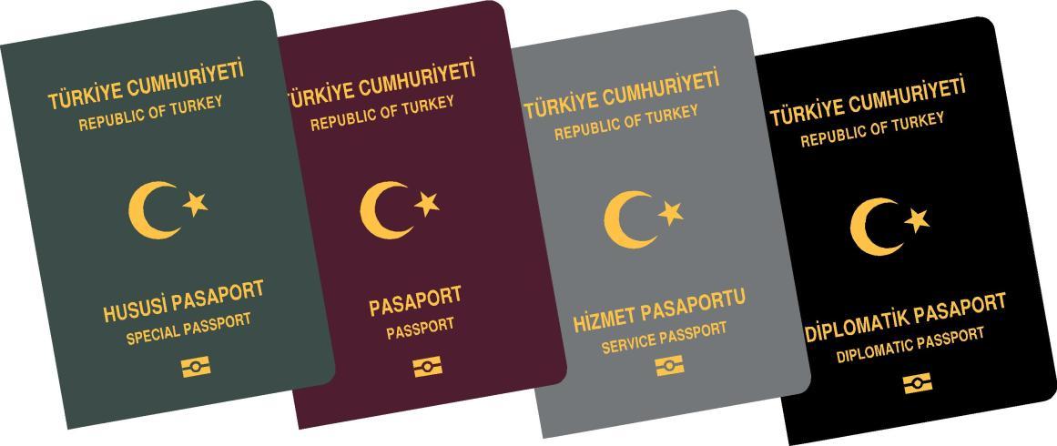 Ukrayna'ya giriş için kimlik veya pasaport gerekiyor.