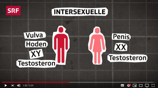 Screenshot Erklärvideo Intersexualität