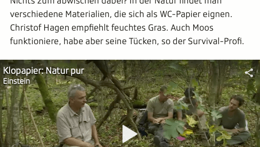 Screenshot Ausschnitt Artikel Survival