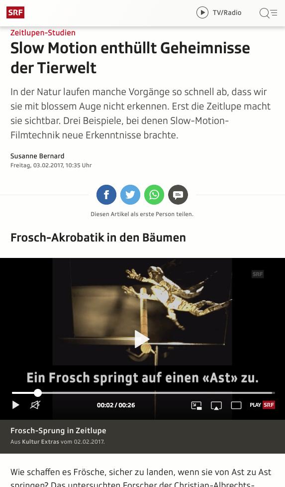 Screenshot Artikel Slow Motion