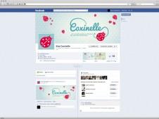 Kita Coxinelle Facebook