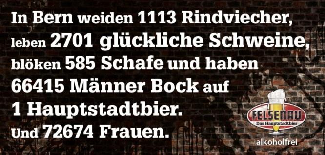 106737_F12_Felsenau_2_GANZ.indd